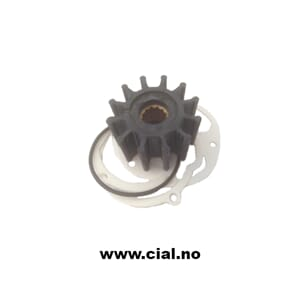 Impeller med pakning for IS